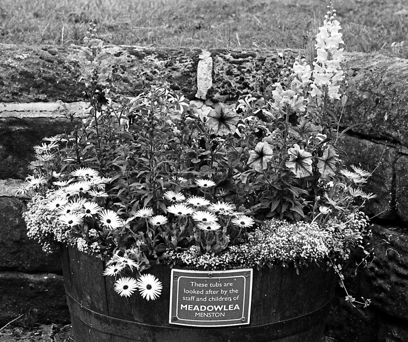 Flower tub on Farnley Road