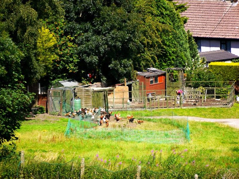 Menston village view 15