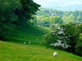 Menston village view 4