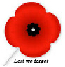 Poppy picture with annotation 'Lest we forget'