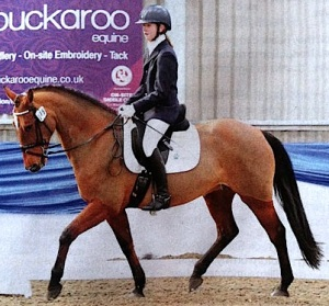 Izzy Palmer on her Welsh thoroughbred mare 'Coco'