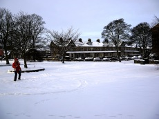 The park in snow