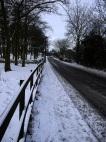 Bingley Road