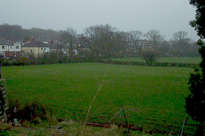 Part of Ings Field seen from behind the BP station on the A65