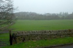 Part of Ings Field seen from Ings Lane; the Menston/Guiseley boundary defined by Mire Back along the back of houses in Moor Crescent, is at the back of the field