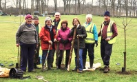 Menston in Bloom gang planting trees in the park