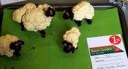 Wonderful cauliflower sheep which got Chloe Sowden and 1st place